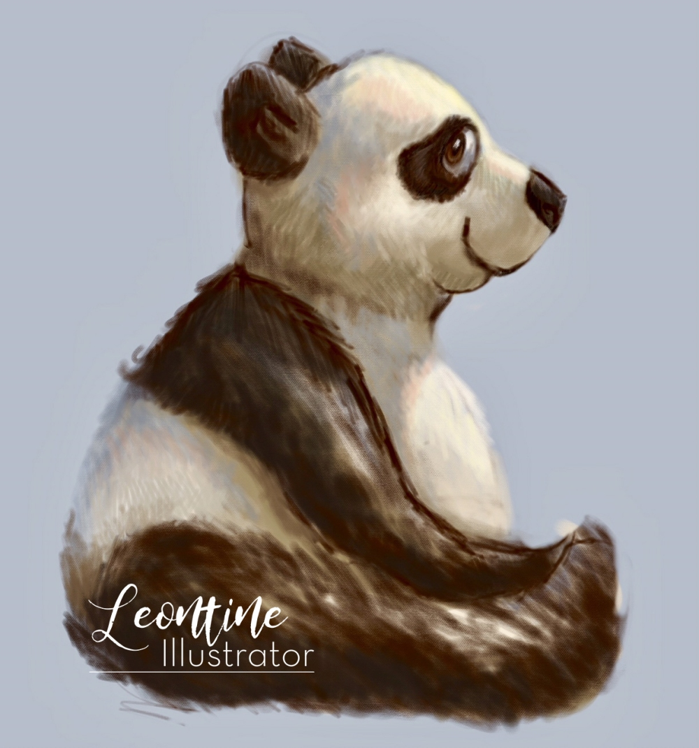 leontine illustrator panda